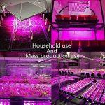 Roleadro 45w Led Horticole Floraison Lampe Led Culture Indoor pour Plante Croissance,Panneau Led Grow Hydroponique éclairage per Germination de la marque Roleadro image 1 produit