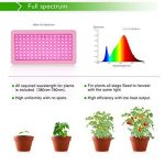 Roleadro Lampe Horticole 600W Grow Light Full Spectrum Led Horticole pour Fruit Légume Fleur Plante de Pot,Eclairage de Greenhouse/Serre/Laboratoire/Jardin/Intérieur de la marque Roleadro image 1 produit