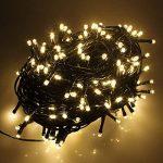 RPGT Noel Guirlande lumineuse LED, 600 Blanc Chaud LEDs sur Cable Vert Fonce pour Noel, Sapin, Maison, Fetes, Mariages, Anniversaire, Nouvel An de la marque RPGT® image 2 produit