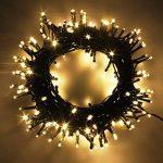 RPGT Noel Guirlande lumineuse LED, 600 Blanc Chaud LEDs sur Cable Vert Fonce pour Noel, Sapin, Maison, Fetes, Mariages, Anniversaire, Nouvel An de la marque RPGT® image 1 produit