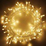 RPGT Noël Guirlande lumineuse LED, 500 Blanc Chaud LEDs sur Câble Transparent pour Noël, Sapin, Maison, Fêtes, Mariages, Anniversaire, Nouvel An de la marque RPGT® image 1 produit
