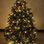 RPGT Noël Guirlande lumineuse LED, 500 Blanc Chaud LEDs sur Câble Vert Foncé pour Noël, Sapin, Maison, Fêtes, Mariages, Anniversaire, Nouvel An de la marque RPGT® image 3 produit
