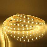 Ruban LED 220V AC 5050 IP68 étanche, High Bright Three Chips, LED Strip Light Très Lumineux Bandeau (15m) de la marque DUVERT image 4 produit