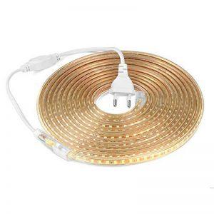 Ruban LED 220V AC 5050 IP68 étanche, High Bright Three Chips, LED Strip Light Très Lumineux Bandeau (Blanc chaud, 10m) de la marque DUVERT image 0 produit