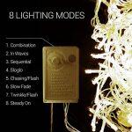 Salcar Filet lumineux à LED 3 x 2 m pour décoration de Noël, fêtes, intérieur, 8 programmes de changement de lumière (blanc chaud) de la marque Salcar image 4 produit