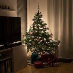 SnowEra - Guirlande lumineuse / Illumination de Noël - 400 LED pour l'intérieur et l'extérieur - Minuteur commutable – Idéale pour décorer Sapin de Noël – Couleur LED: blanc chaud – Longueur: env. 50 m câble inclus de la marque SnowEra image 4 produit