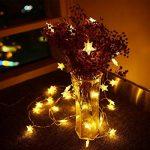 Sunnest Guirlandes Lumineuse LED - Guirlande Guinguette Etanche Chaine de lampes étoilé - Blanche Chaude 5 mètres 40 ampoules de la marque Sunnest image 3 produit