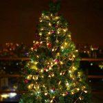 Sunnest Guirlandes Lumineuse LED - Guirlande Guinguette Etanche Chaine de lampes étoilé - Blanche Chaude 5 mètres 40 ampoules de la marque Sunnest image 4 produit