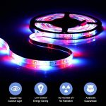 Sunnest Ruban LED 3528 RGB Etanche 5M Strip Light Multicolore 300 LED Télécommande Infrarouge 24 Touches + Adapteur + Alimentation 2A 12V de la marque Sunnest image 1 produit