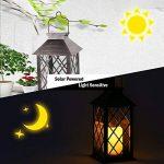 Tomshine Lanterne Solaire, LED Lampe solaire extérieure, avec Bougie LED Flamme Fire Effet ,Sans fil portable rechargeable pour Garden Patio Courtyard Outdoor [Classe énergétique A+] de la marque Tomshine image 2 produit