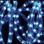 Tube lumineux Bleu 10 m de la marque Féérie Lights&Christmas image 1 produit