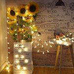 Uping Guirlande Lumineuse Boule LED 12m 100 Ampoules avec Prise EU 8 Modes de Fonctionnement Décoration Halloween/Noël/Jardin/Cérémonie Intérieur et Extérieur(Blanche chaude) de la marque Uping image 4 produit