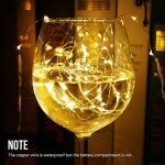 vase et guirlande lumineuse TOP 2 image 4 produit