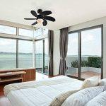 ventilateur de plafond noir TOP 2 image 2 produit