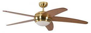 ventilateur de plafond réversible TOP 1 image 0 produit