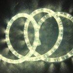 Webkaufhaus24 flexible lumineux à lED blanc 2–50 m de guirlande noël, Plastique, Blanc chaud, 50 m 100.00 watts 230.00 volts de la marque webkaufhaus24 image 1 produit