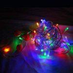 WISD Batterie Exploité LED Guirlande Lumineuse 6.5M 50 LED Light pour la fete, Noël, Jardin, mariage - Coloré de la marque WISD image 4 produit