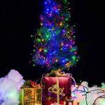 WISD Guirlande Lumineuse Décorative 102.8M 1000 LED sur Câble Vert, Alimentation Électrique, Etanche IP44, 8 Modes d'éclairage, Lumière Décoration Intérieure et Extérieure pour Noël, Sapin, Chambre, Jardin, Fêtes, Mariage - Coloré de la marque WISD image 4 produit