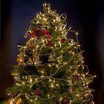 WISD Guirlande Lumineuse LED De Décoration en Coloré Pour Noël Mariage Jardin Partie, 53m 500 LED Lumineuse avec 8 modes de fonction EU Plug - Blanc chaud de la marque WISD image 4 produit