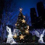 Yakamoz LED Guirlandes Lumineuses 10M 100 LEDs Comme Etoilées Lumières LED pour Noël Mariage Décoration d'extérieur et intérieure Blanc Froid Lumière Avec Boîte de Batterie de la marque Yakamoz image 2 produit