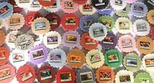 Yankee Candles® - Pack de 24 Bougies Parfumées en Cire sans Mèche - Design Tartelettes de la marque ScreenCentre image 0 produit